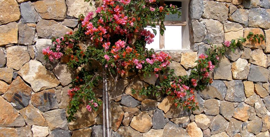 Show can jordi ibiza villa detail architecture