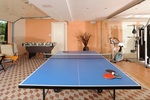 Thumb villa exclusive   tennis table