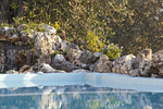 Thumb luxury seafront villa corfu piedra swimmingpool nature reflection