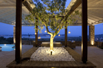 Thumb luxury seafront villa corfu piedra tree detail garden